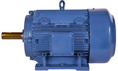 Crane & Hoist Application Motors